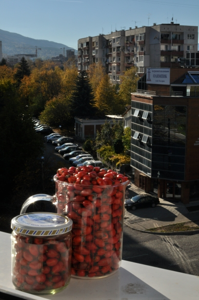 From the limits of Sofia: (sub)urban harvesting