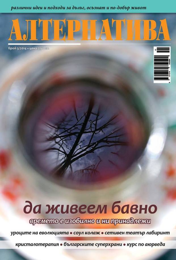 Alternativa Nov 2014 Cover